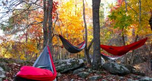 beginner guide to hammock camping