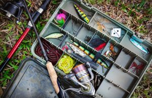 Surf Fishing Baits You Should Use For Surf Fishing