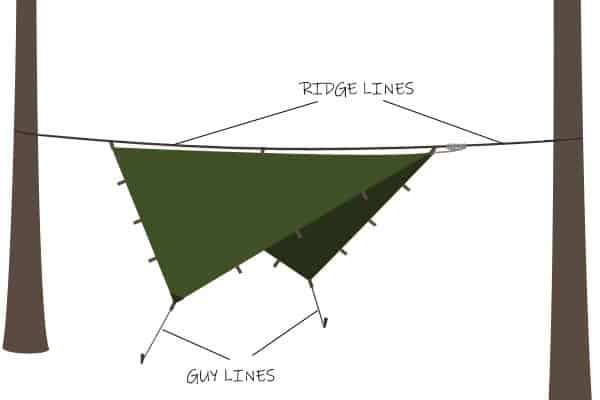 Ridge Lines and Guy Lines