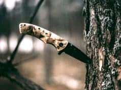 folding knife on tree