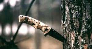 folding knife on tree