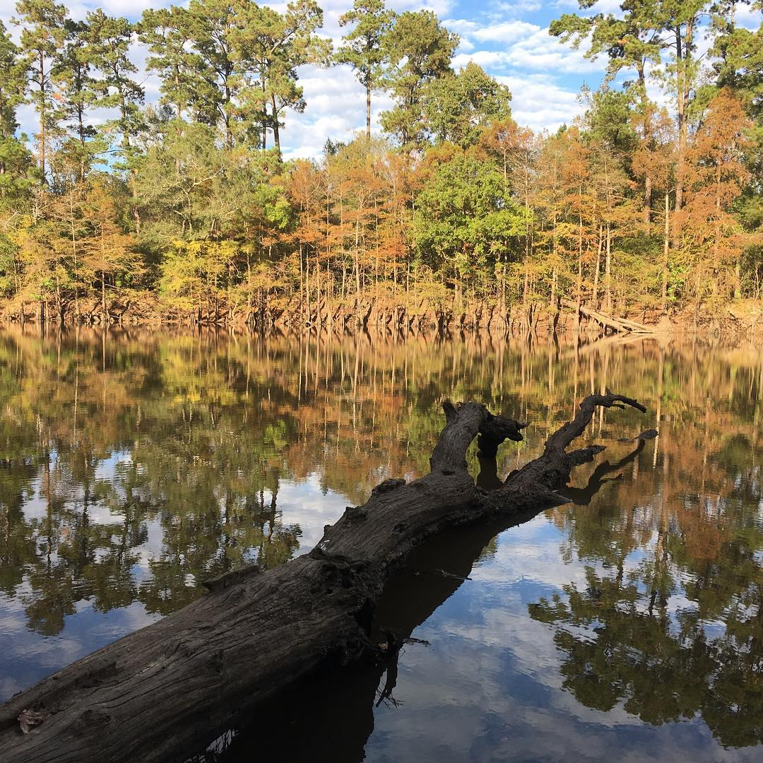 Best Backpacking Trails in Texas - Davy Crockett National Forest and Big Thicket National Preserve