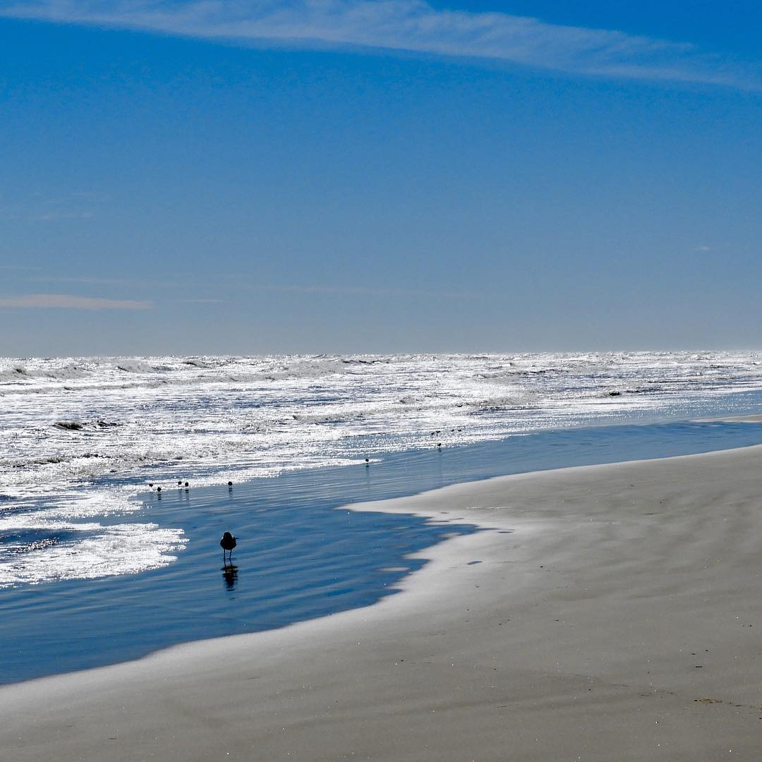 Best Backpacking Trails in Texas - Padre Island National Seashore