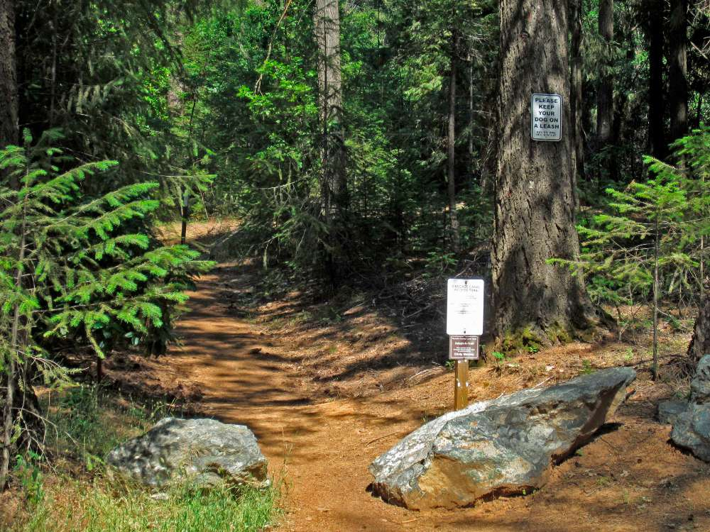 Most Breathtaking Hiking Trails You Must Visit in the United States - Cascade Mountain