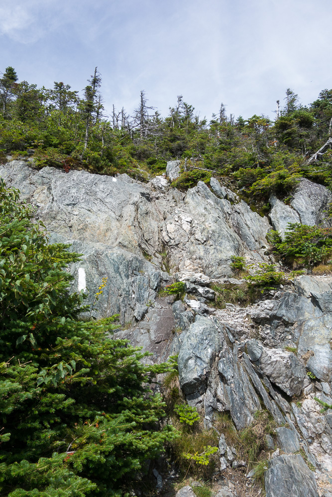 Most Breathtaking Hiking Trails You Must Visit in the United States - Jay Peak Long Trail North